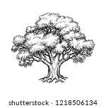 ink sketch of oak tree. hand... | Shutterstock .eps vector #1218506134
