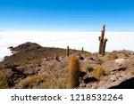 salar de uyuni view from...   Shutterstock . vector #1218532264