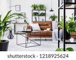urban jungle in modern living... | Shutterstock . vector #1218925624