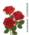 Stock photo a bouquet of red roses on a white background 1219024234