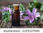 a bottle of mallow essential... | Shutterstock . vector #1219127044