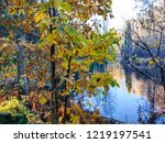 autumn forest river trees view. ...   Shutterstock . vector #1219197541