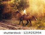 rider on a horse in the woods... | Shutterstock . vector #1219252954