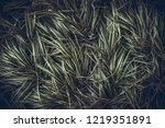 creative layout made of green...   Shutterstock . vector #1219351891