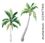 set of pictures of hand drawn...   Shutterstock . vector #1219477441