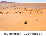 waterhole  namib desert  aerial ... | Shutterstock . vector #1219488994