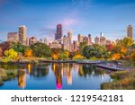 chicago  illinois  usa downtown ... | Shutterstock . vector #1219542181