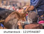 the tamer of the predatory... | Shutterstock . vector #1219546087