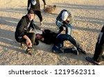 palestinian demonstrators... | Shutterstock . vector #1219562311