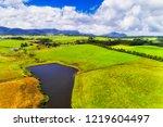 grazing country of rural... | Shutterstock . vector #1219604497