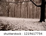 shot of the snow covered... | Shutterstock . vector #1219617754