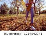 autumn fun young woman running... | Shutterstock . vector #1219642741