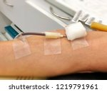 arm of a donor donating blood... | Shutterstock . vector #1219791961