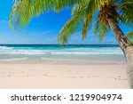 untouched tropical beach with... | Shutterstock . vector #1219904974