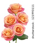 Image Of Five Pink Roses Closeup