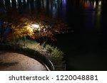 streetlamp in the dark | Shutterstock . vector #1220048881