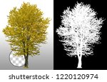 cut out tree. yellow tree in... | Shutterstock . vector #1220120974