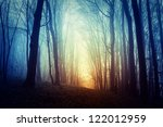 mysterious forest in fog | Shutterstock . vector #122012959