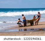crystal cove  california  ... | Shutterstock . vector #1220196061