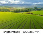 landscape of countryside hills... | Shutterstock . vector #1220380744
