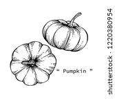 pumpkin drawing illustration by ... | Shutterstock .eps vector #1220380954