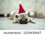 cute dog pug breed in red santa ... | Shutterstock . vector #1220439667