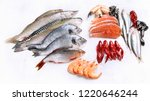 Raw Fish And Seafood. Healthy...
