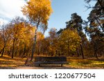 bench in the park  golden... | Shutterstock . vector #1220677504