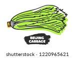 vector illustration of hand... | Shutterstock .eps vector #1220965621