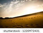 series of fooprints on the sand ...   Shutterstock . vector #1220972431