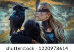Beautiful Black Crow  Viking...