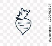 beet vector outline icon...   Shutterstock .eps vector #1220983924