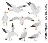 Cartoon Atlantic Seabird ...