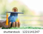 student hand dropping investing ... | Shutterstock . vector #1221141247