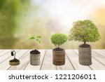 growing money or plant on coins ... | Shutterstock . vector #1221206011
