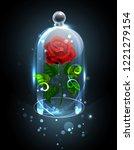 red  eternal rose under a...   Shutterstock . vector #1221279154