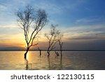 Sunrise Over Silhouette Tree O...