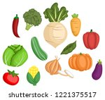 many type of vegetables in one... | Shutterstock .eps vector #1221375517