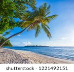 palm on the beach. tropical... | Shutterstock . vector #1221492151