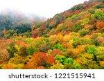 autumn view along the highland... | Shutterstock . vector #1221515941