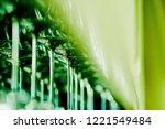 empty glasses wine in... | Shutterstock . vector #1221549484