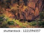 beautiful golden forest an... | Shutterstock . vector #1221596557