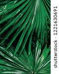 Tripical Green Palm Leaf...