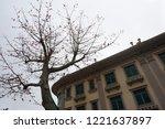 winter of macau | Shutterstock . vector #1221637897