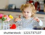cute beautiful little toddler... | Shutterstock . vector #1221737137