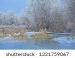 snowy winter landscape. frozen...   Shutterstock . vector #1221759067