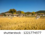 beautiful autumn rice field and ... | Shutterstock . vector #1221774577