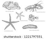 black and white illustration of ... | Shutterstock . vector #1221797551