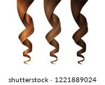 set of wavy hair curls in... | Shutterstock .eps vector #1221889024
