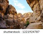 petra  jordan. tombs and... | Shutterstock . vector #1221924787